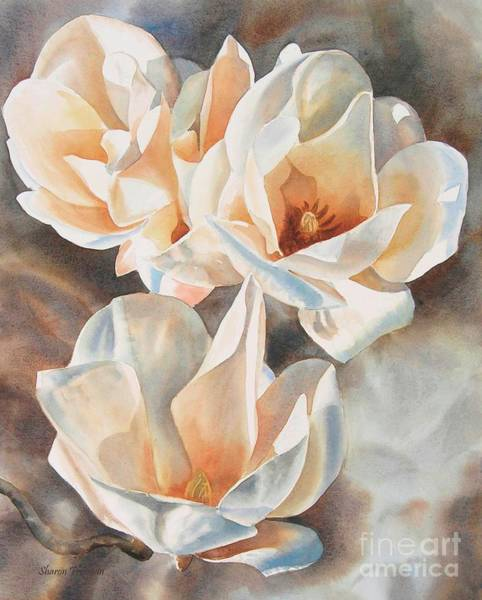Magnolia Flower Paintings Fine Art America