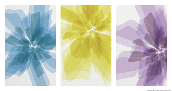 Wall Art - Mixed Media - Three X-ray Flowers by Yellow Caf�