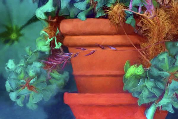Wall Art - Photograph - Through A Window - Terra Cotta Pot And Plant by Nikolyn McDonald