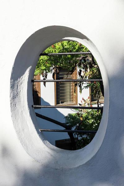 Photograph - Through The Garden Window - by Georgia Mizuleva