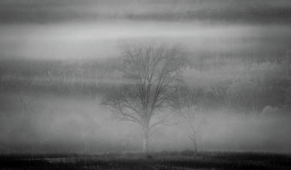 Photograph - Through The Haze by Dan Sproul