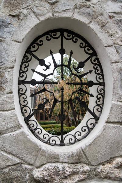 Photograph - Through The Lacy Garden Window - by Georgia Mizuleva