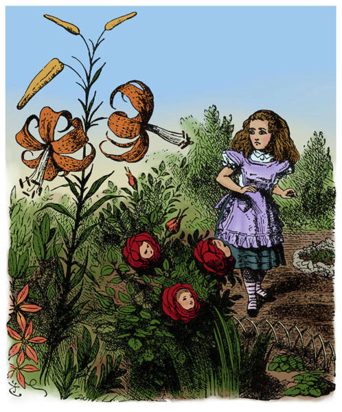 Wall Art - Photograph - Through The Looking-glass, Alice by Science Source
