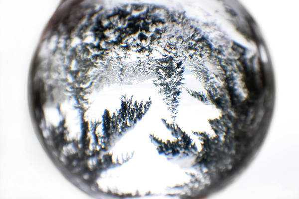 Photograph - Through The Looking Glass Winter Wonderland by Peggy Collins