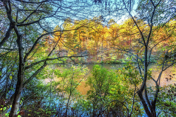 Photograph - Through The Trees In Autumn by Debra and Dave Vanderlaan