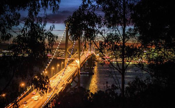 Wall Art - Photograph - Through The Trees On Treasure Island We See The Bay Bridge By Ni by Kim Vermaat