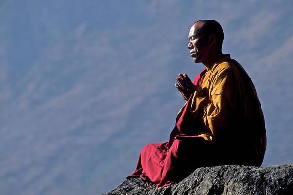 Shaved Head Photograph - Tibetan Buddhist Monk by David Cayless