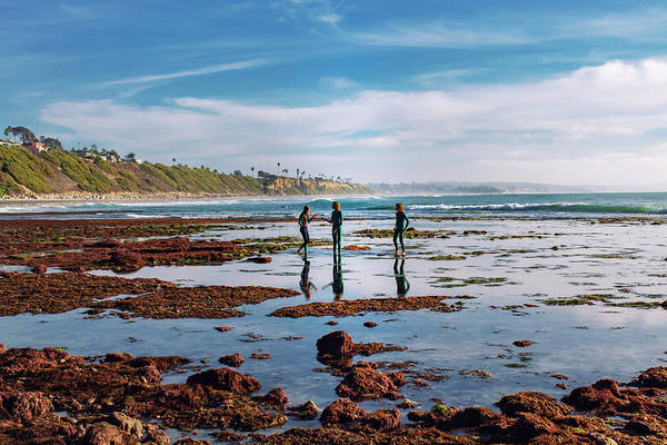 Photograph - Tide Poolers by Alison Frank