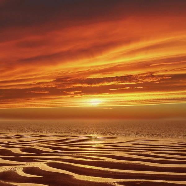 Sunset Mixed Media - Tideland by Jacky Gerritsen