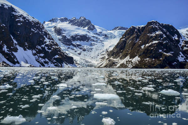 Fjord Photograph - Tidewater Glacier In Kenai Fjords by Mike Redwine