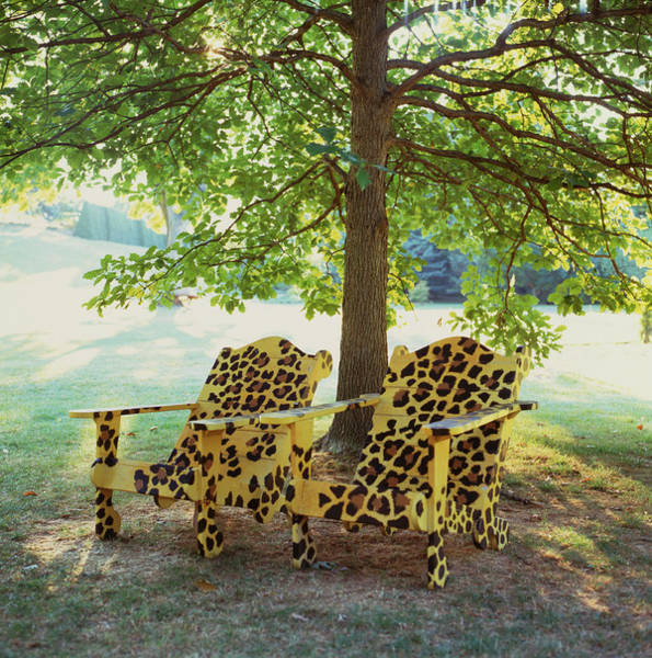 Photograph - Tigarspotedchairs by Richard Felber