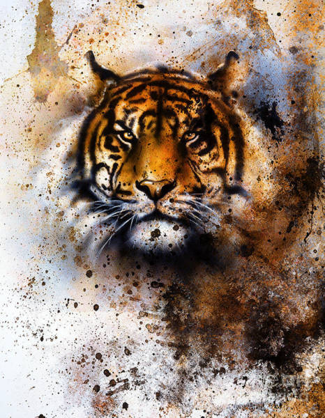 Big Cat Wall Art - Photograph - Tiger Collage On Color Abstract by Jozef Klopacka