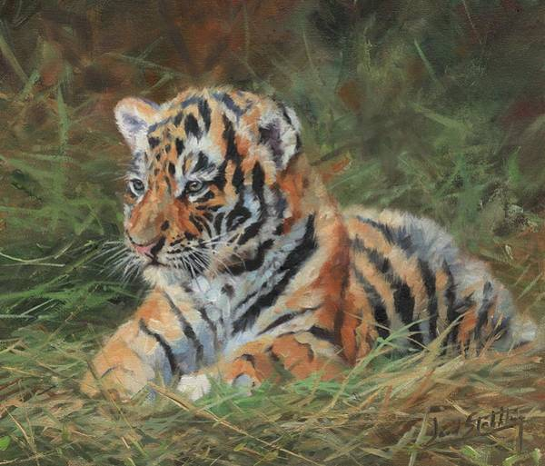 Painting - Tiger Cub In Grass by David Stribbling