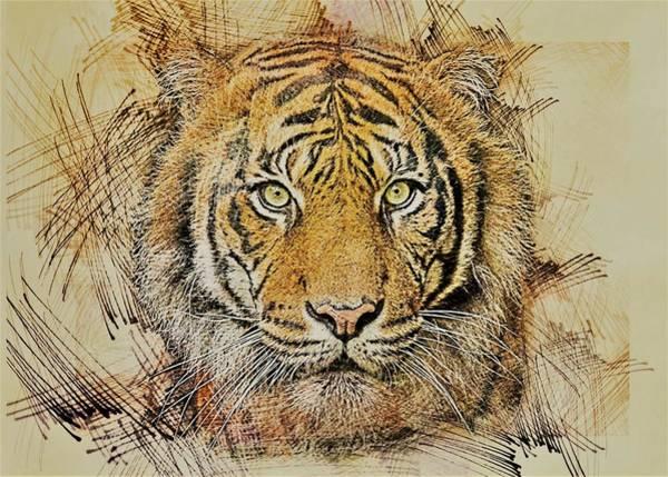 Predator Painting - Tiger Head by ArtMarketJapan