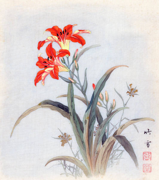 Painting - Tiger Lily by Chikutei