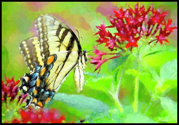 Digital Art - Tiger Swallowtail Butterfly On Egyptian Star Cluster Flowers by A Gurmankin