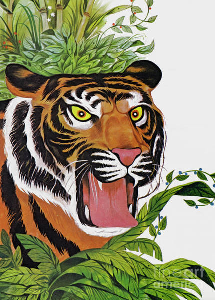 Growling Wall Art - Painting - Tiger, Tiger, Burning Bright  by Richard Hook