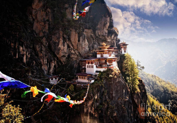 Photograph - Tigers Nest 2 by Scott Kemper