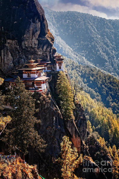 Photograph - Tigers Nest I by Scott Kemper