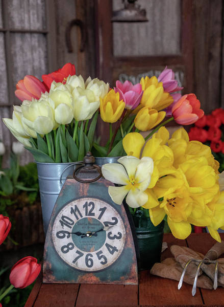 Photograph - Time For Some Tulips By Tl Wilson Photography by Teresa Wilson
