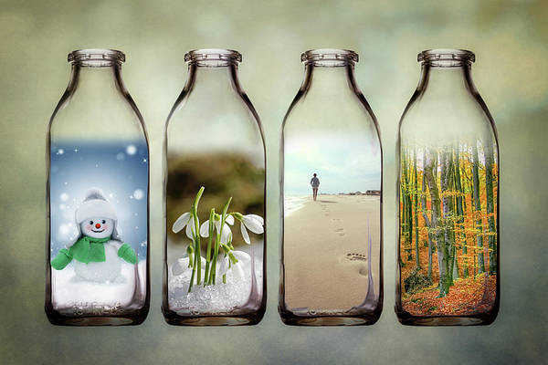 Seasonal Photograph - Time In A Bottle - The Four Seasons by Tom Mc Nemar