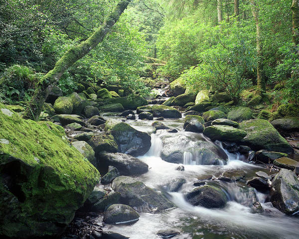 Killarney Photograph - Time Lapse Of River Rushing Over Rocks by Henglein And Steets