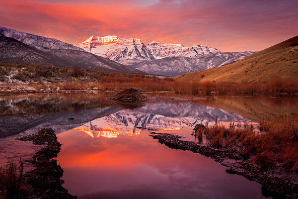 Photograph - Timp Beaver Pond Sunrise by Johnny Adolphson