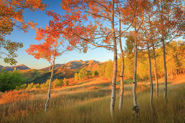 Photograph - Timp With Fiery Aspens by Johnny Adolphson