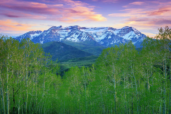 Wall Art - Photograph - Timp With Spring Aspens by Johnny Adolphson
