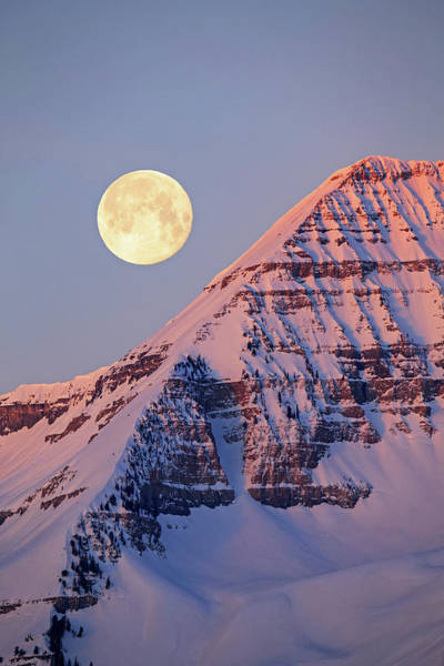 Wall Art - Photograph - Timpanogos Moonset by Johnny Adolphson