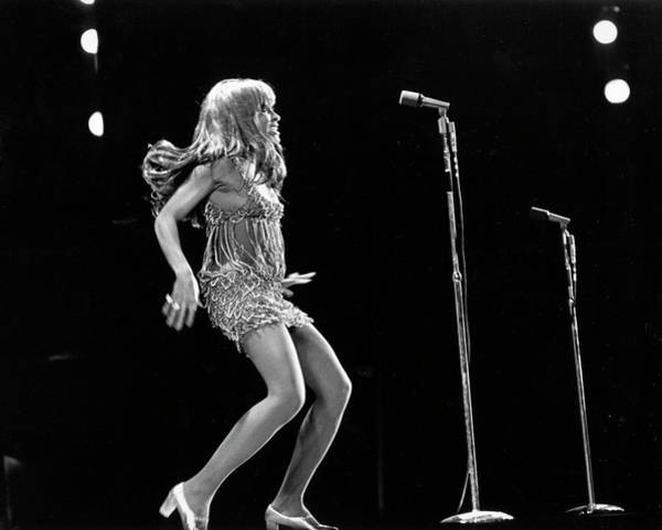 Adults Only Photograph - Tina Turner At The Greek Theatre by Michael Ochs Archives