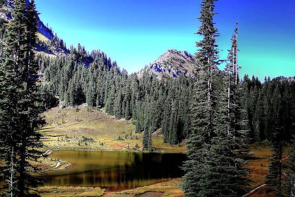 Photograph - Tipsoo Lake On Chinook Pass Washington by David Patterson