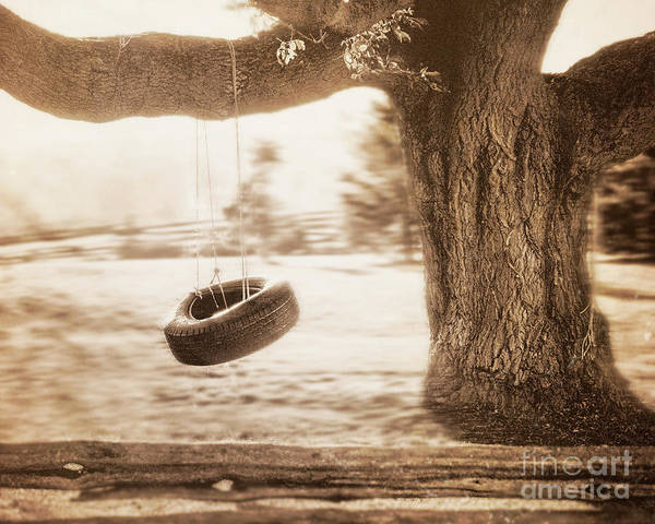 Photograph - Tire From A Tree by Hal Halli