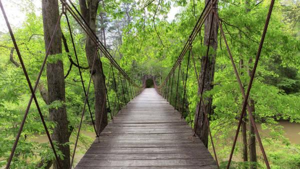 Photograph - Tishomingo Swinging Bridge by Susan Rissi Tregoning