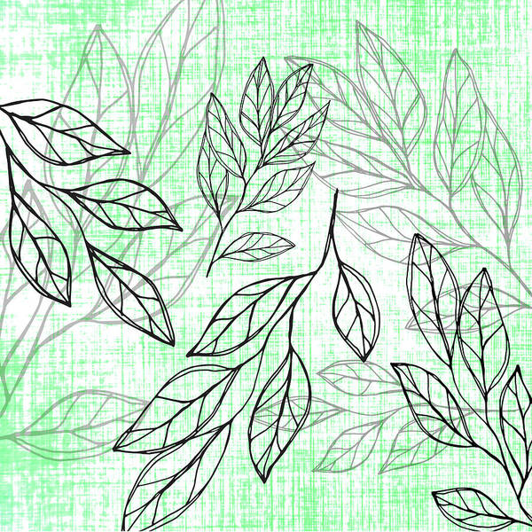 Drawing - Titoki Leaf by Jocelyn Friis