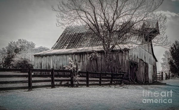 Hillside Wall Art - Digital Art - Tn Barn by Elijah Knight