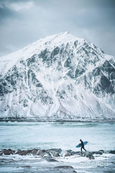 Wall Art - Photograph - To Ride The Arctic Waves by Evelina Kremsdorf