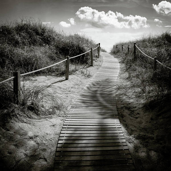 Wall Art - Photograph - To The Beach by Dave Bowman