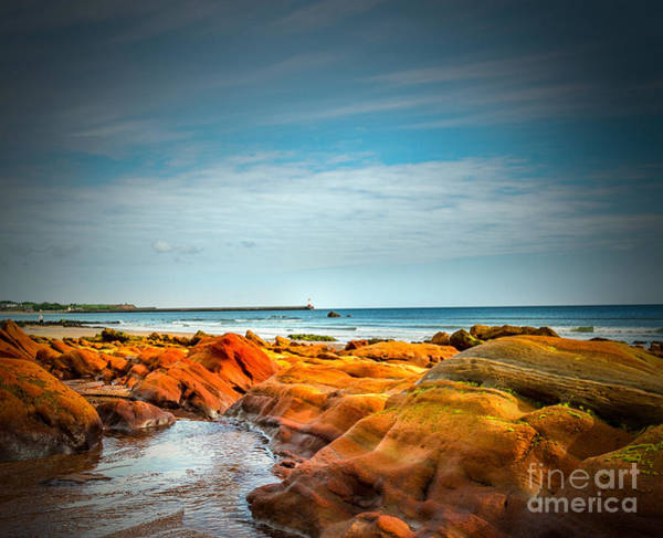 Berwick Upon Tweed Photograph - To The Lighthouse by Nick Eagles
