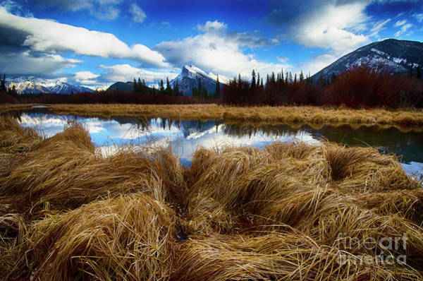 Wall Art - Photograph - To The Wild Country Canadian Rocky Mountains 7 by Bob Christopher