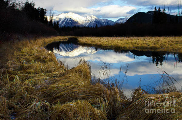 Wall Art - Photograph - To The Wild Country Canadian Rocky Mountains 5 by Bob Christopher