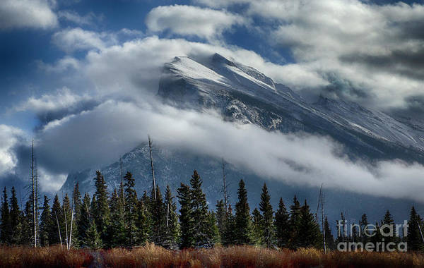 Wall Art - Photograph - To The Wild Country Canadian Rocky Mountains by Bob Christopher