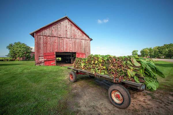 Photograph - Tobacco Barn by Todd Klassy