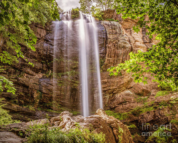 Photograph - Toccoa Falls by Nick Zelinsky