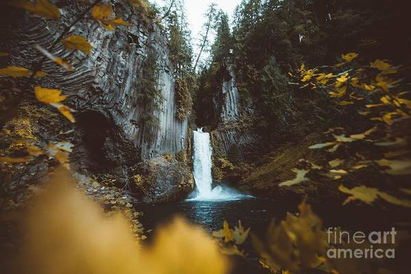 Wall Art - Photograph - Toketee Falls by JR Photography