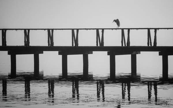 Photograph - Tomales Bay Vi Bw by David Gordon