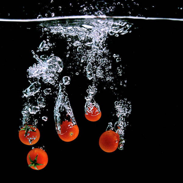Object Photograph - Tomato Attack by ? 2009 All Rights Reserved By Paul Petruck