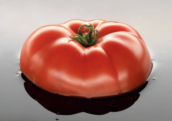 Wall Art - Photograph - Tomato In Oil, Close-up by Tony Hutchings