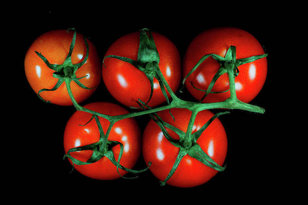 Vegan Wall Art - Photograph - Tomato X by Hyuntae Kim