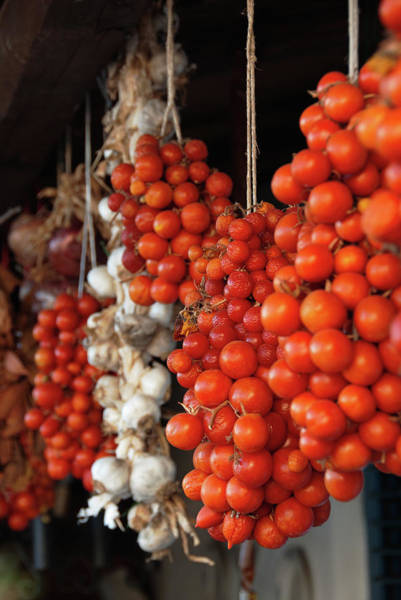 Hanging Photograph - Tomatoes, Garlic And Onions Hanging, In by Dallas Stribley